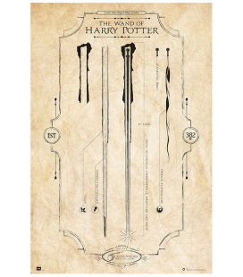 PÓSTER HARRY POTTER VARITA