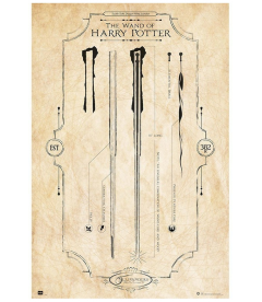 POSTER VARITAS HARRY POTTER