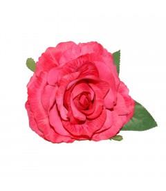 Rosa Maravilla