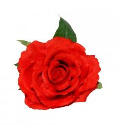 Rosa del Sur