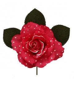 Rosa Danza Lunares