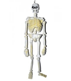 Esqueleto 130 cm
