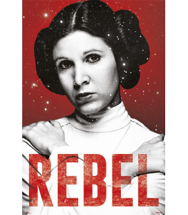 PÓSTER STAR WARS LEIA